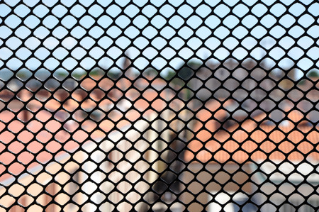 depth of field: Metallic window fence, grid. Shallow depth of field