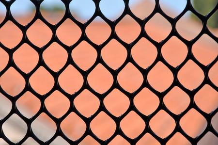 lattice window: Metallic window fence, grid. Shallow depth of field