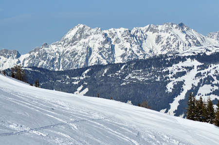 offpiste: Snowy off-piste slope in the Alps