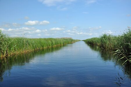 danubian: Water canal in the Danube delta, Romania