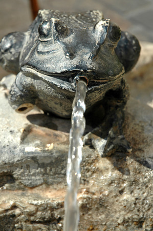 water jet: Fountain with brass frog and water jet
