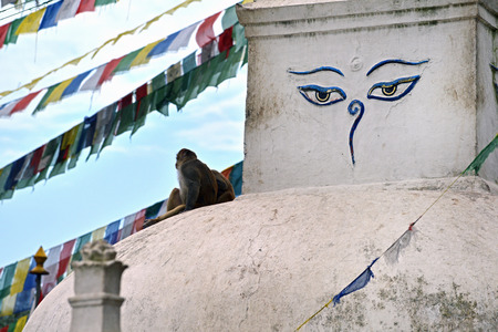 25 29: SWAYAMBHUNATH  SEPTEMBER 29: Buddhist stupa of Swayambhunath remained intact after the massive earthquake that hit Nepal on April 25 2015. On September 29 2013 in Swayambhunath Nepal