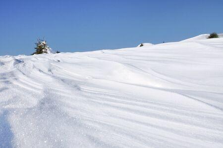 powder snow: Fresh powder snow