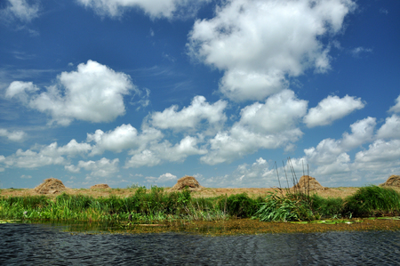 danubian: Landscape in the Danube delta, Romania