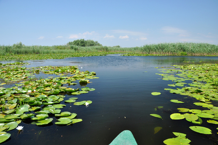 danubian: Beautiful lake in Danube delta, Romania