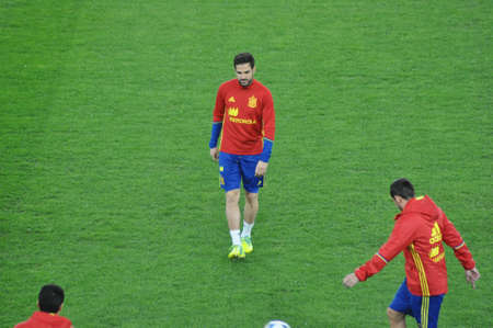 cesc: CLUJ-NAPOCA, ROMANIA - MARCH 26, 2016: Cesc Fabregas, player of the National Football Team of Spain playing during the training session before the Romania-Spain match