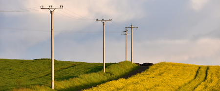 electric line: Electricity poles in an agricultural field Stock Photo