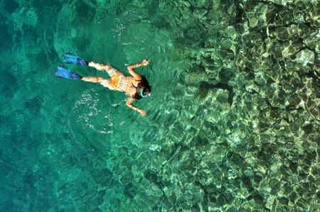 skin diving: Young woman in swimsuit snorkeling in clear shallow tropical sea over coral reefs