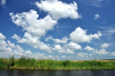 danubian: Water channel in Danube delta. Romania Stock Photo