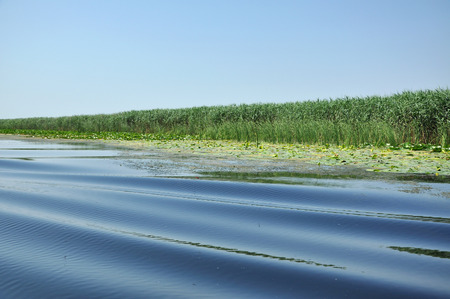 danubian: Water channel in Danube delta. Romania Stock Photo
