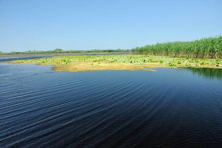 danube delta: Danube delta. Water channel, lake and marsh. Romania