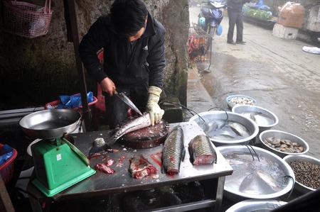 sapa: SAPA, VIETNAM - FEBRUARY 22, 2013: Unidentified man gut and clean a fish in the rural market of Sapa, Northern Vietnam