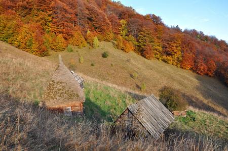 Herbst Herbst . Bunte Herbstlandschaft im Gebirge