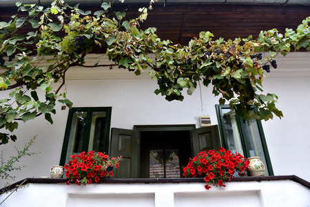 Rural house with red Geranium flowers in the porch