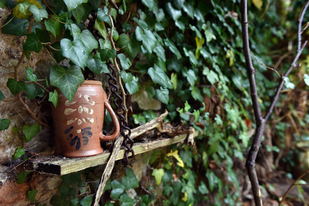 Abandoned vintage ceramic jug near a wall covered with ivy