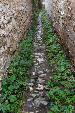back alley: Narrow village alley with stone walls covered with plants. Ruelle