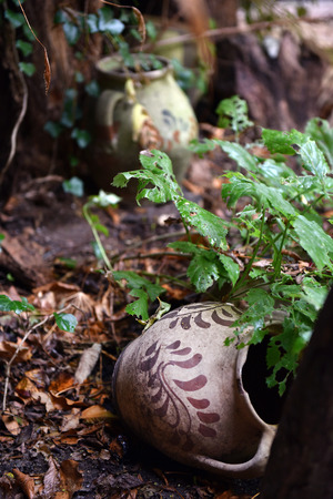 Damaged and cracked old handmade pottery vessels abandoned in the garden Stock Photo
