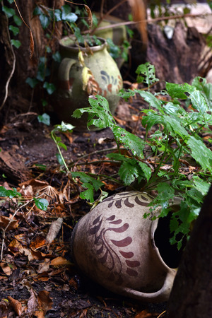 Abandoned vintage ceramic jug pottery in the outdoors