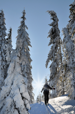 backcountry: Backcountry skier enjoying winter first snow in the mountains Stock Photo