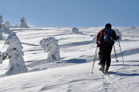 backcountry: Backcountry skiers touring in beautiful winter mountains