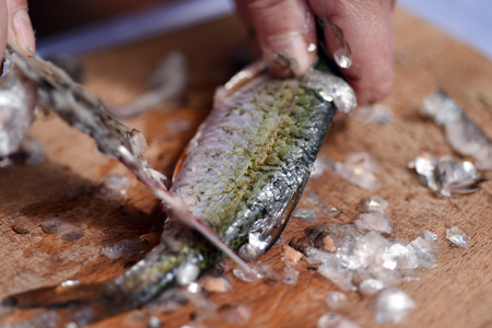 Firsherman gutting and cleaning scales of freshly caught fish Stock Photo