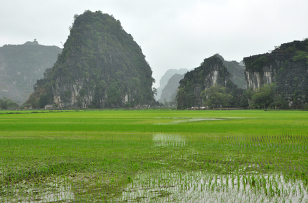 Vietnam landscape. Rice fields and karst towers in Ninh Binh in a cloudy day Stock Photo