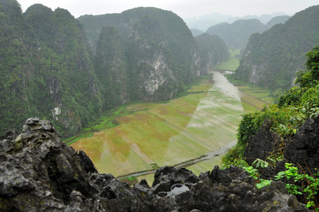Panorama view of rice fields and limestone rocks from Hang Mua Temple viewpoint in a rainy day. Tam Coc, Ninh Binh, Vietnam