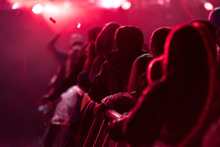 Rear view of silhouette of crowd with raised arms at a concert. Summer music festival concept