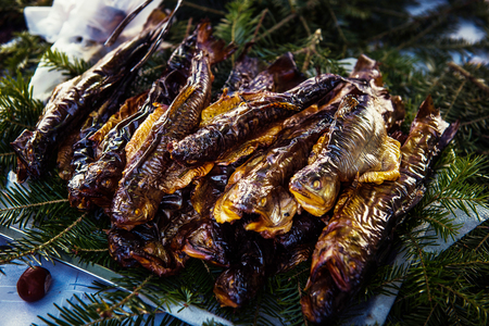 brown trout: Smoked trouts on pine branch in the market