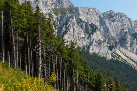 Piatra Craiului limestone mountains. Southern Carpathians, Transylvania, Romania Stock Photo