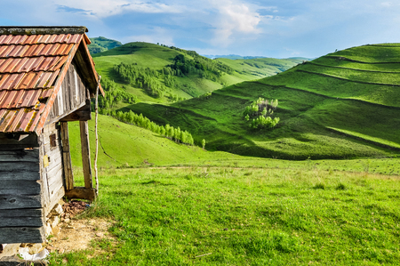 Green meadow, countryside in Transylvania with abandoned barn