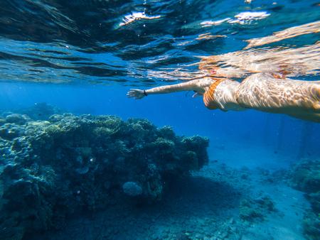Woman snorkeling underwater above coral reef. Red sea, Eilat, Israel