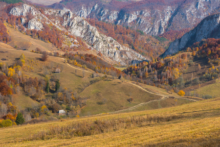 Majestic landscape with autumn trees in forest. Colorful fall in Transylvania, Romania Stock fotó - 106935257