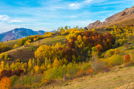 Autumn countryside panorama in mountains. Forest with colorful foliage. Transylvania, Romania 免版税图像