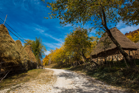 Dirt road through mountain village. Colorful autumn forest and wooden house 免版税图像