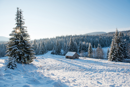 Winter countryside landscape with snow covered trees and hills