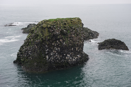 Gatklettur arch basalt rocks formation at the coast of Atlantic Ocean in Arnarstapi in Iceland