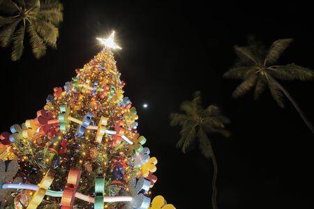 honolulu: Honolulu Hale Christmas tree