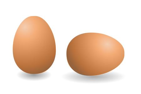 茶色の卵 2 個のベクトルします。白い背景の分離卵。