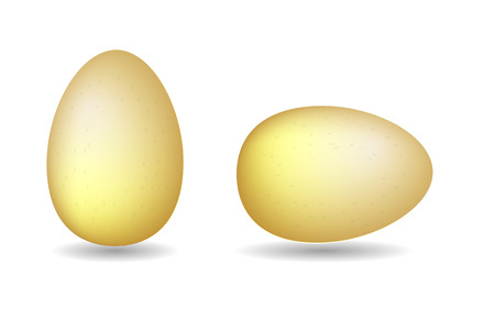 Two vector brown eggs. Isolated eggs on white background. Illustration