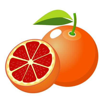 The Icon fruit orange. Slice grapefruit fruit . Isolated on white background .Vector illustration