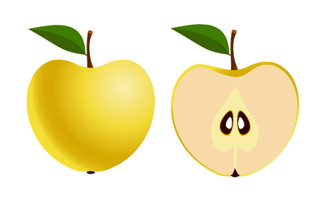 Apple fruit and apple slice on a white background. Vector