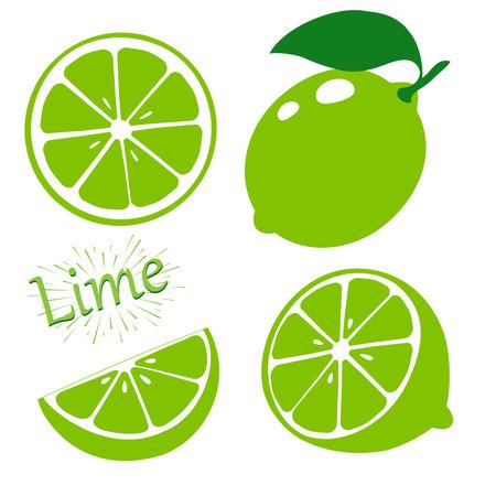 Stel plakjes limoen geïsoleerd op een witte achtergrond. Vector illustratie. Vector Illustratie