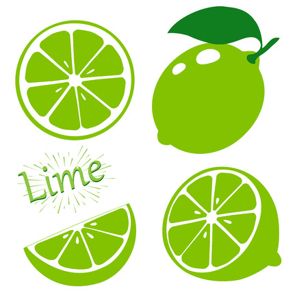Set slices of lime isolated on white background. Vector illustration.