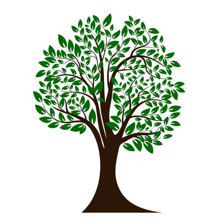 Green tree silhouette. Isolated on white background. Vector illustration