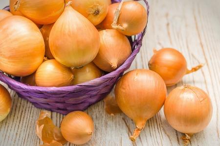 Bulb onion on wooden board. Large onion harvest in a wicker basket.