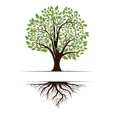 Logo of a green life tree with roots and leaves. Vector illustration icon isolated on white background. Stock Illustratie