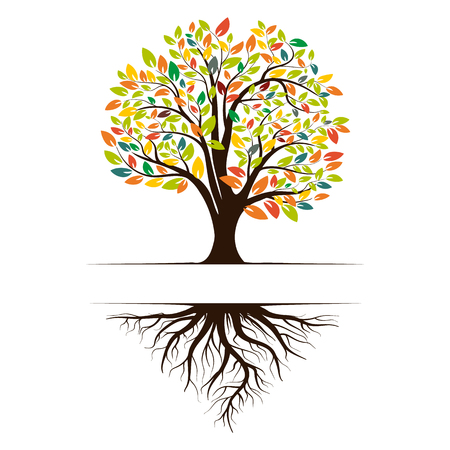 Logo of a green tree with roots and leaves. Vector illustration icon isolated on white background.