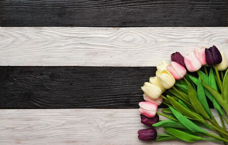 Beautiful Tulip flowers on a dark, black and white wooden textured background. Spring bouquet. Striped background with space for text. Top view. Striped background with space for text.