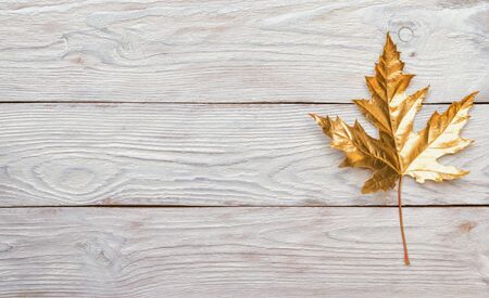 Festive greeting card with the Golden maple autumn leaf on wooden white background. Flat lay, top view, copy space. Stockfoto